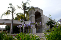 383 St. Wilfrid of York Church in Huntington Beach