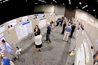 1089 OMED 2016-Posters & Awards