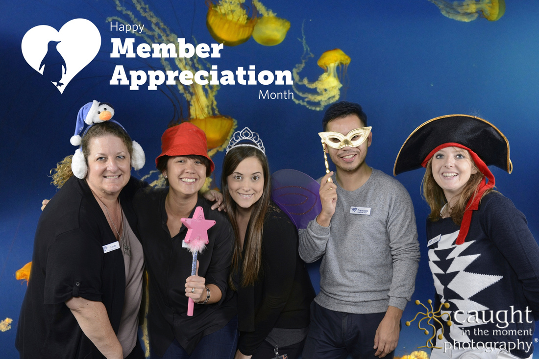Green Screen Photography Photo Booth at Aquarium of the Pacific