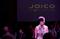 550 JOICO 2017 Global Education Conference